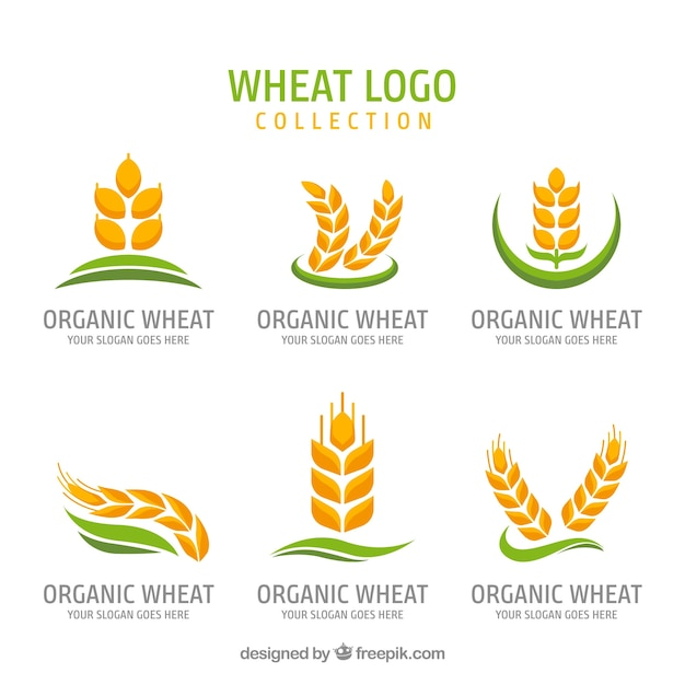 Flat wheat logo collection Free Vector