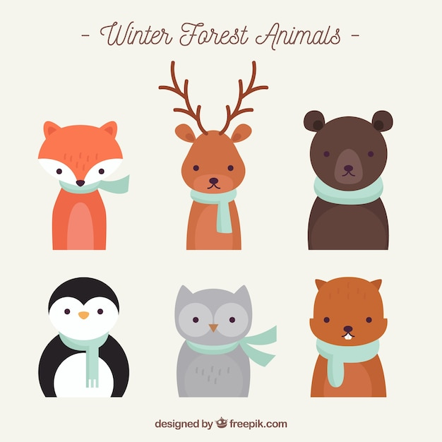 Flat winter animal collection