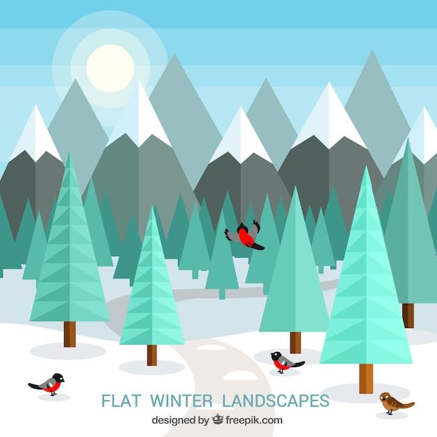 Flat winter landscape