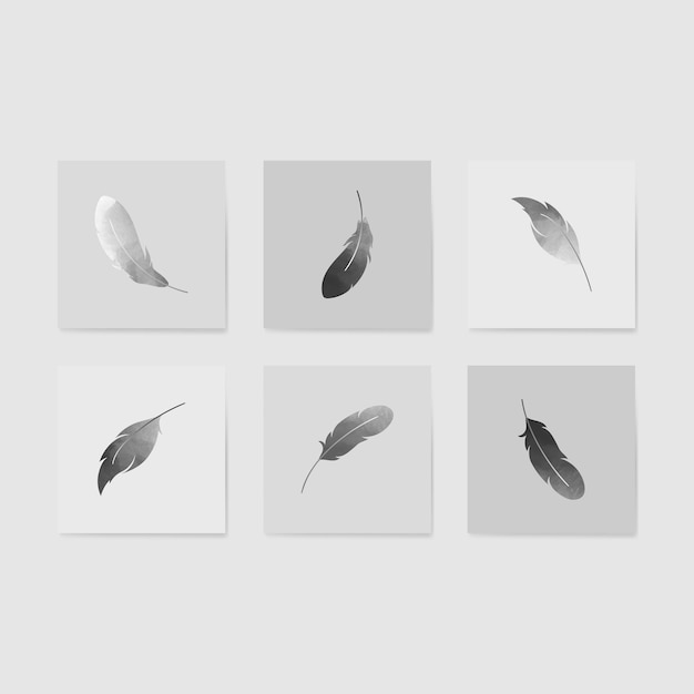 Floating feathers set Free Vector