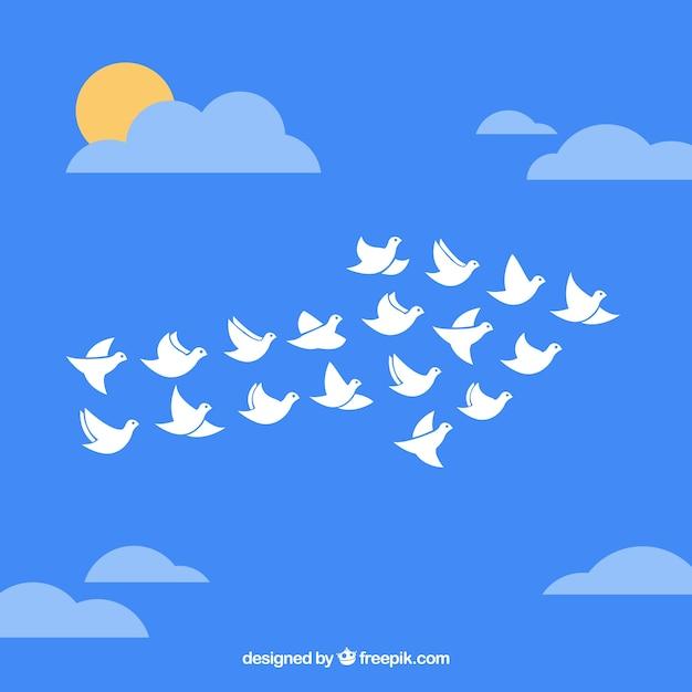 Flock Of Birds In Arrow Shape 769011