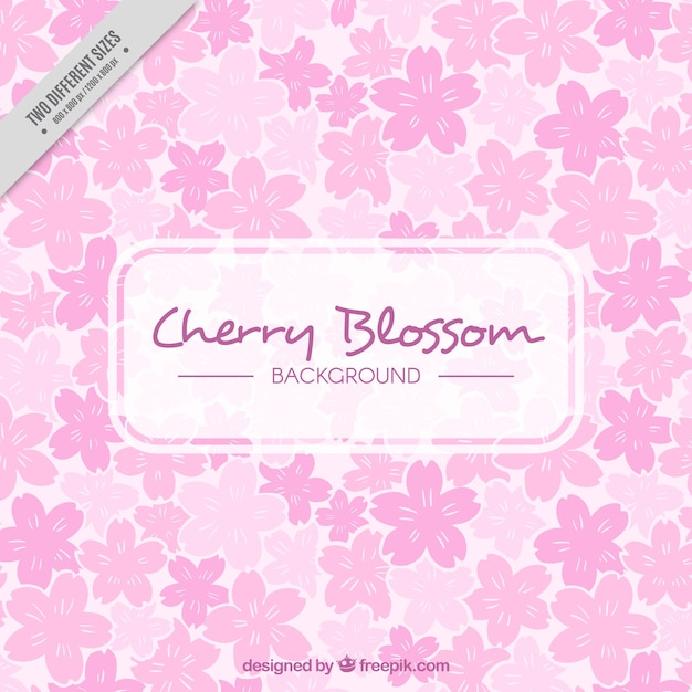 Floral background with flowers in pink\ tones