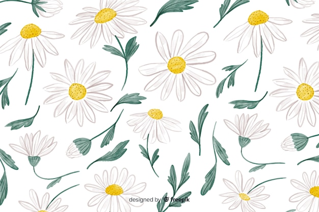Floral background with watercolor daisies Free Vector