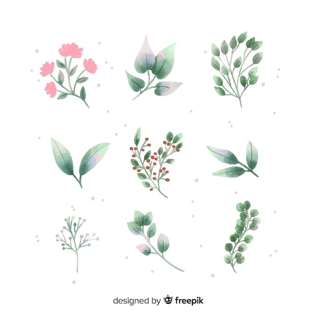 Floral branch collection made with watercolors Free Vector