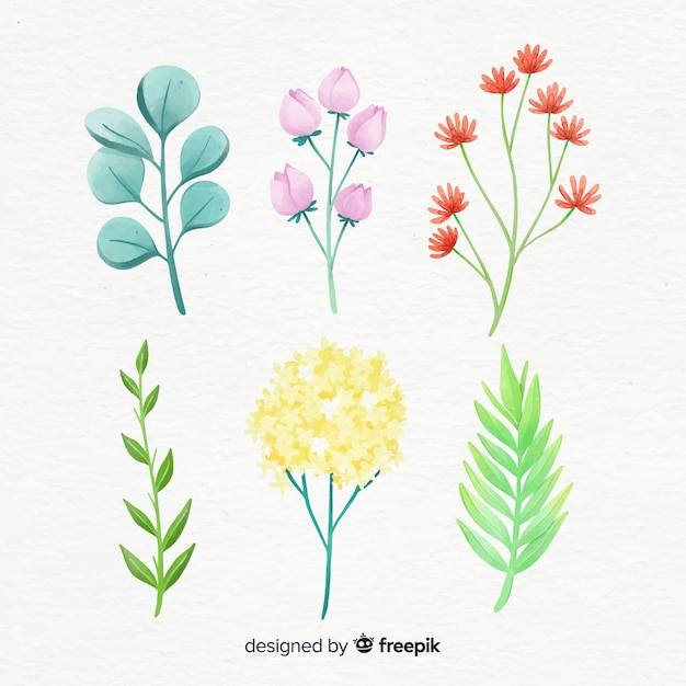 Floral branch collection in watercolor style Free Vector