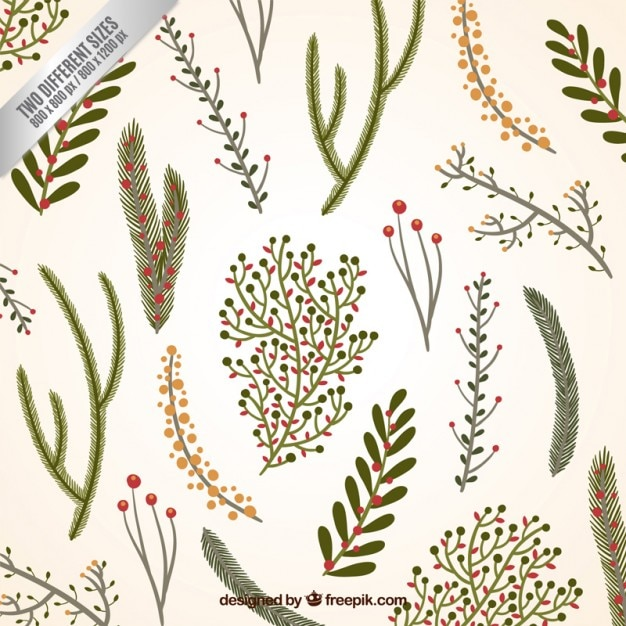 Christmas Branch Vector.Floral Christmas Branches Background Vector Premium Download