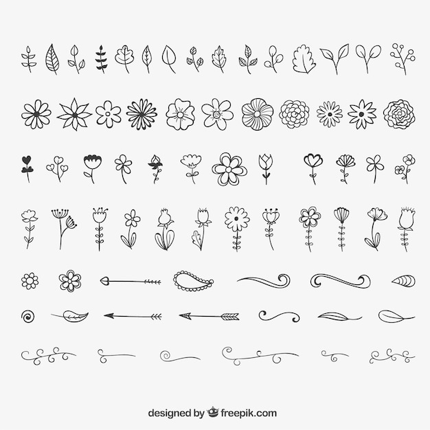 Floral Decoration And Ornaments Free Vector