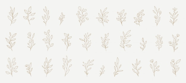 Floral decorations for all needs Premium Vector