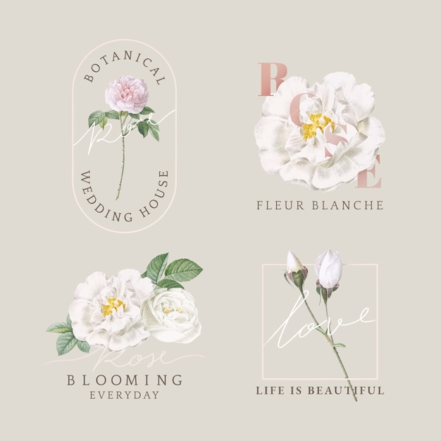 Floral design card collection Free Vector