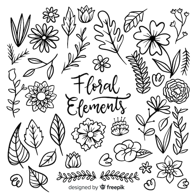 Floral element collectio Free Vector