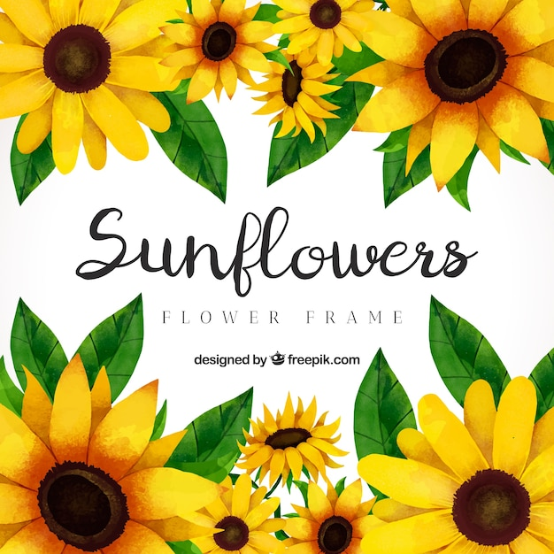 Sunflower Vectors Photos And Psd Files Free Download