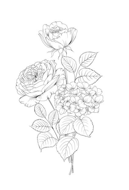 Ghirlanda floreale di ortensie e rose su sfondo bianco. Vettore gratuito