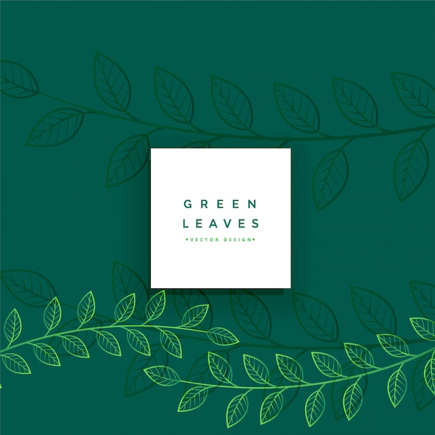 Floral green line leaves background Free Vector