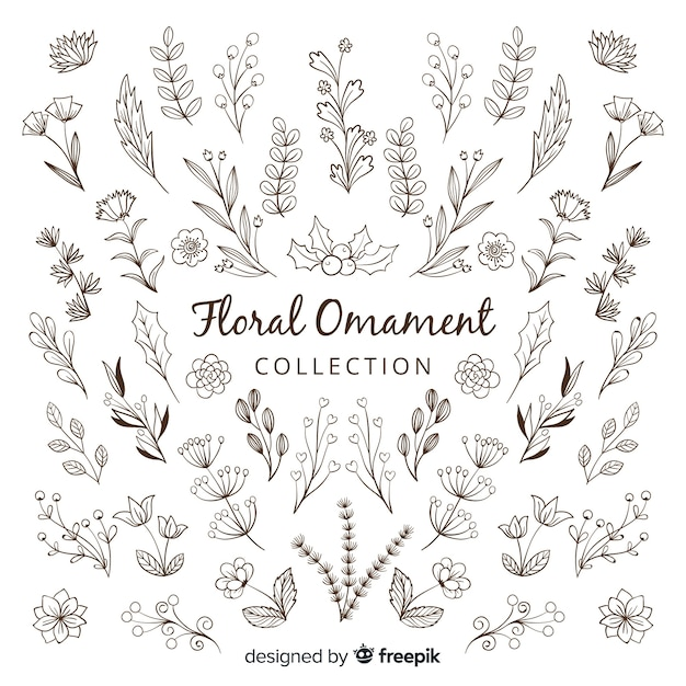 Floral ornament collection Free Vector