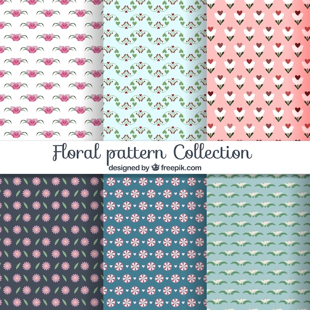 Floral pattern collection Free Vector