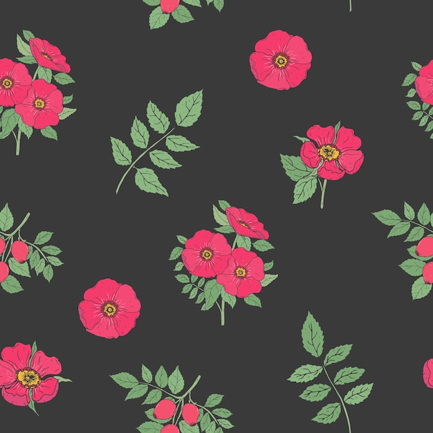 Floral seamless pattern with elegant dog rose flowers, stems and leaves hand drawn in retro style on black Premium Vector