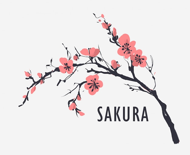 Floral seamless pattern with sakura flowers. vector illustration Premium Vector