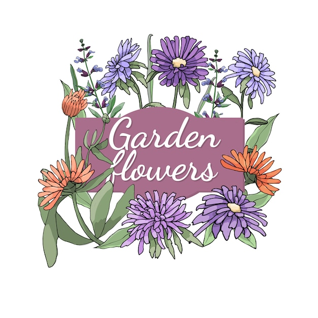 Floral set. summer and spring isolated garden flowers and herbs with aster, marigold, sage. Premium Vector