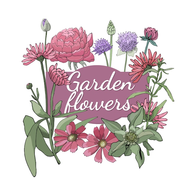 Floral set. summer and spring isolated garden flowers and herbs with gaillardia, peony, tarragon, chives, marigold. Premium Vector