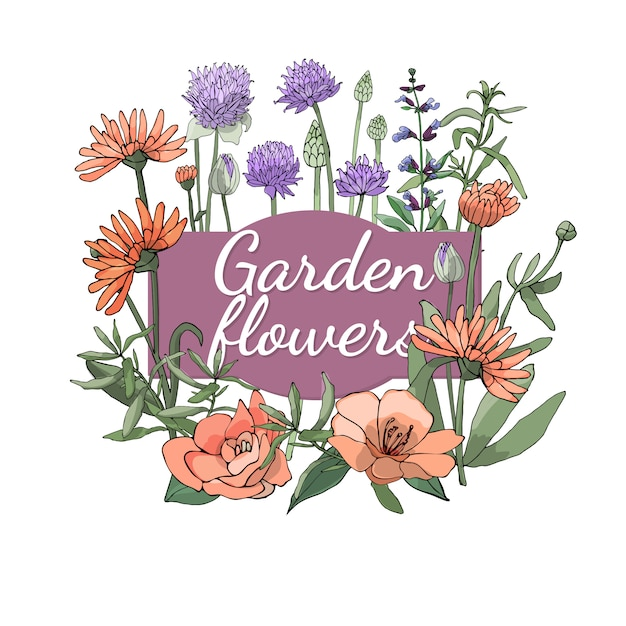 Floral set. summer and spring isolated garden flowers and herbs with marigold, camellia, chives, sage, salvia, tarragon. Premium Vector
