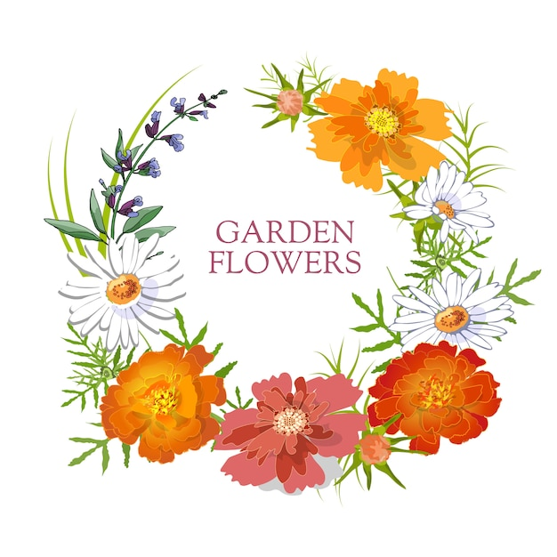 Floral set. summer and spring isolated garden flowers with chamomile, tagetes, sage, marigold. Premium Vector