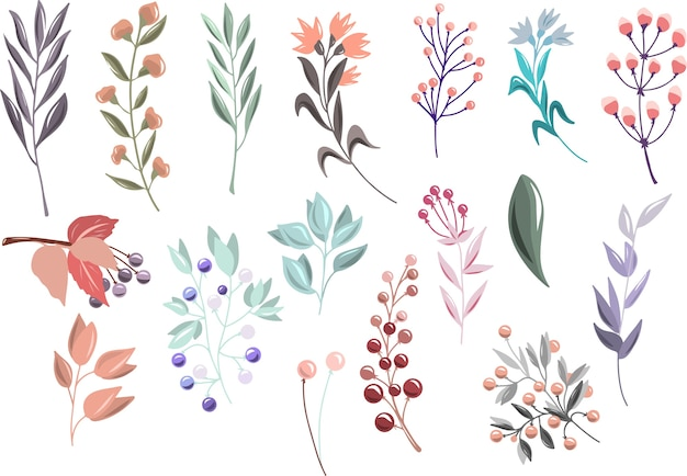 Floral set with branches and berries Premium Vector