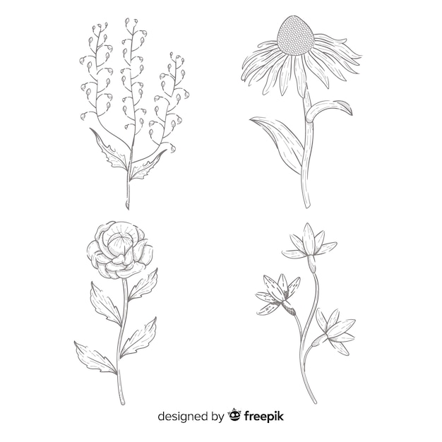 Flower collection hand-drawn concept Free Vector
