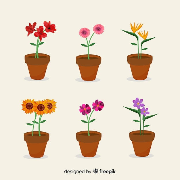 Flower collection Premium Vector