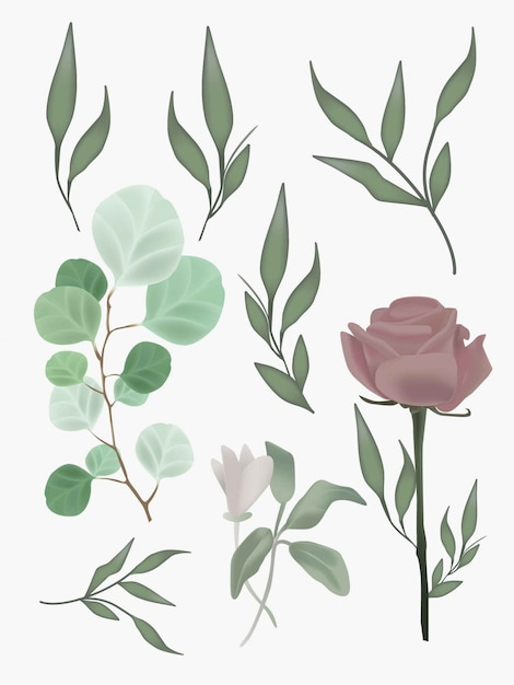 Flower foliage realistic mesh botanical illustrations set. graphic elements for wedding design, posters, postcards. Premium Vector