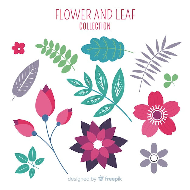 Flower and leaves collection Free Vector