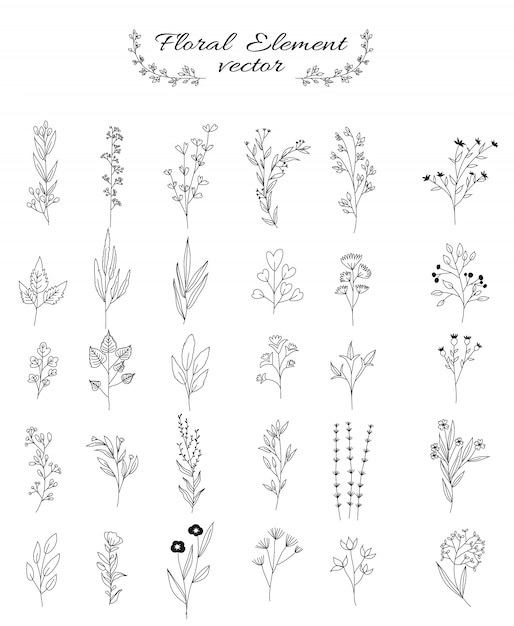 Flower and leaves set for wedding, flower shop, hand drawn style Premium Vector