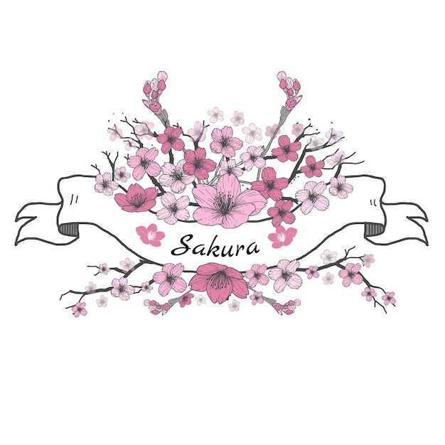 Flower ribbon of Sakura. Drawing and sketch on white