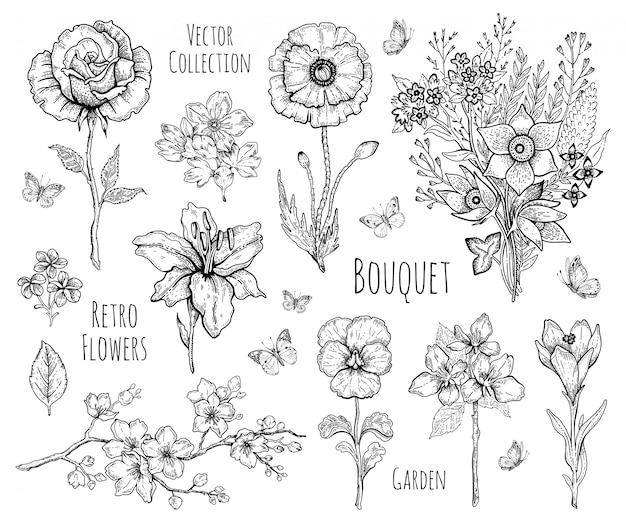 Flower set. rose, poppy, lily, cherry blossom. floral graphic, sketch plant illustration. black and white vintage line art. spring or summer hand drawn flowers. Premium Vector