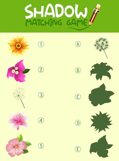 Flower shadow matching game template Free Vector
