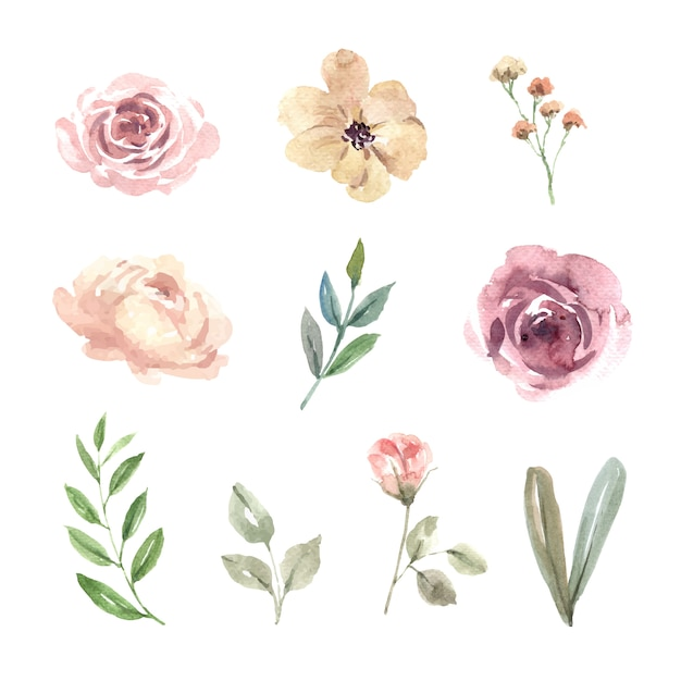 Flower wedding watercolor design element Free Vector