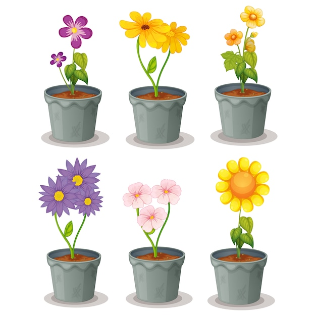 Flowerpots collection Free Vector