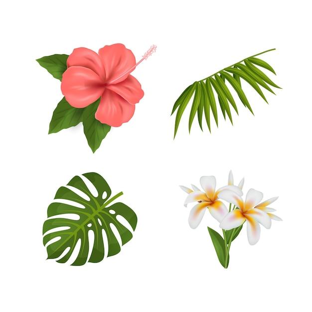 花と葉のコレクション 無料ベクター
