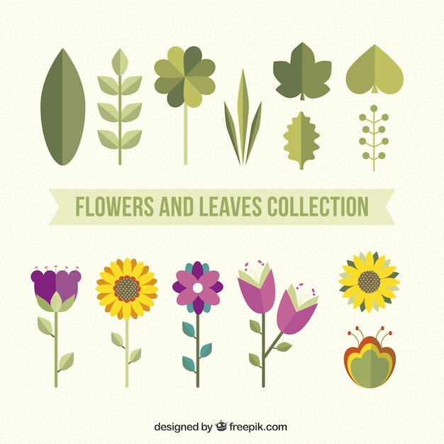 Flowers and leaves pack in flat style Vector | Free Download