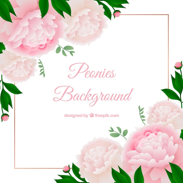 Flowers background with peonies
