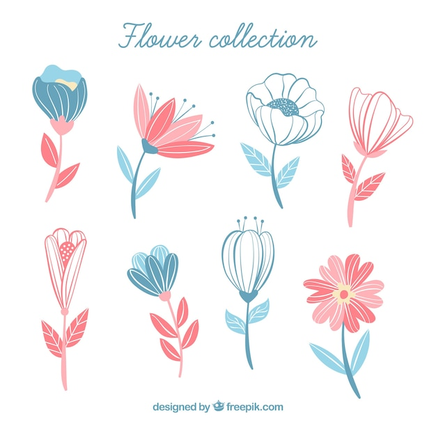 Flowers collection in hand drawn style Free Vector