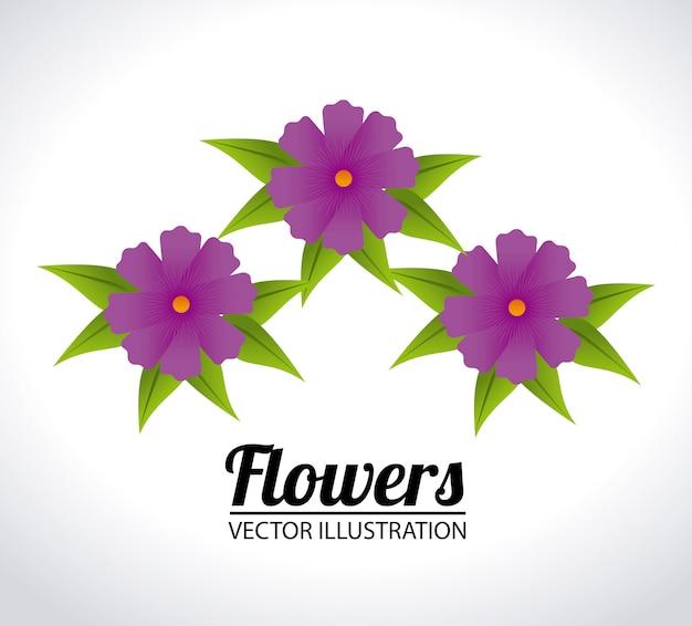 Flowers design illustration Free Vector