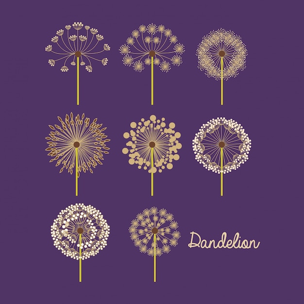 Flowers design Premium Vector
