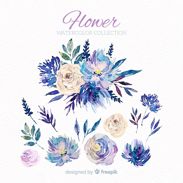 Flowers and leaves collectio Free Vector