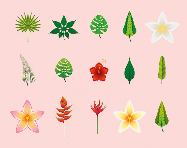 Flowers and leaves icon set Free Vector