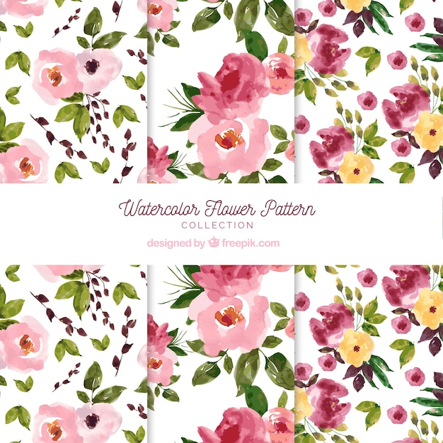 Flowers patterns collection in watercolor\ style