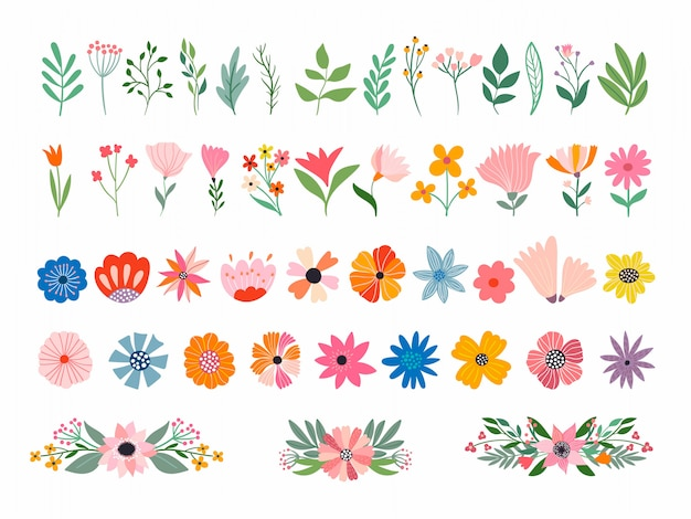 Flowers and plants collection with different elements isolated on white Premium Vector