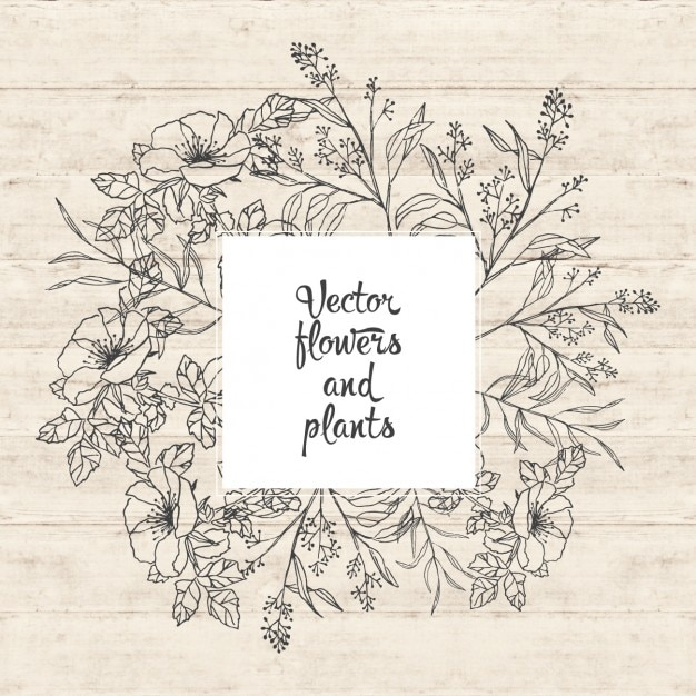 Flowers and plants design Free Vector