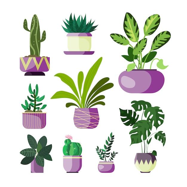Flowers in pots set Free Vector