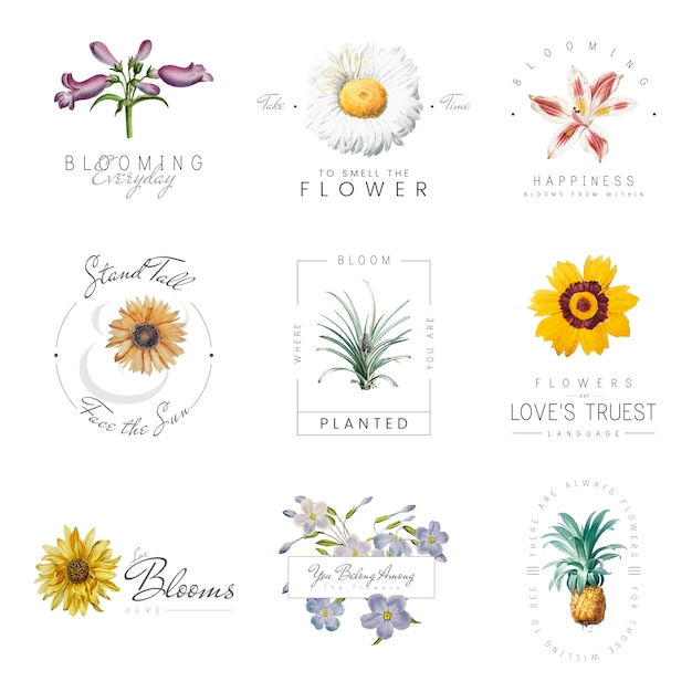 Flowers with quotes Free Vector