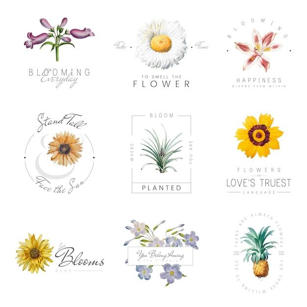 Цветы с цитатами Бесплатные векторы